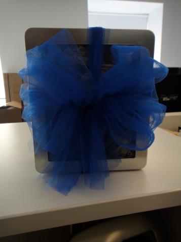 Blue bow on metal window box
