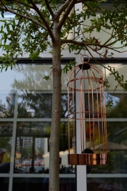 Birdcage decor at the Treehouse (c) Winter Shanck, 2014