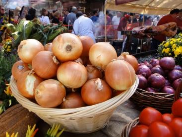 Onions, Ferragosto Festival, Bronx, NY (c) Winter Shanck, 2014