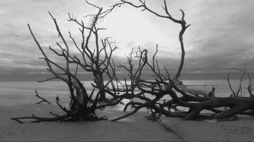 boneyard-beach-alter-bw