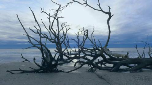 boneyard-beach-alter-color